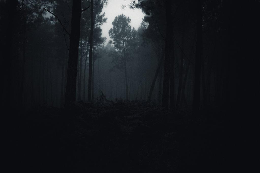 Brouillard-14-sur-1424-decembre-2014.jpg