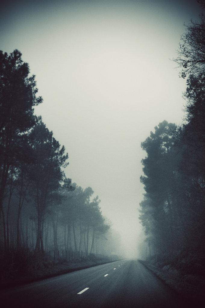 Brouillard-1-sur-1424-decembre-2014.jpg