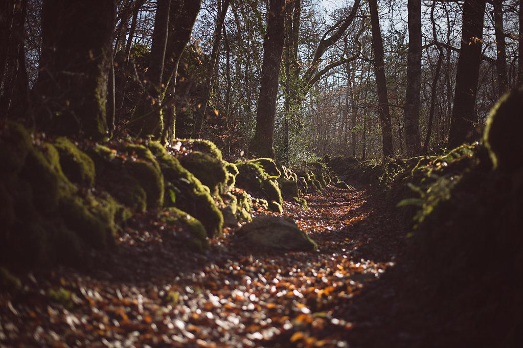 Cantal-5656.jpg