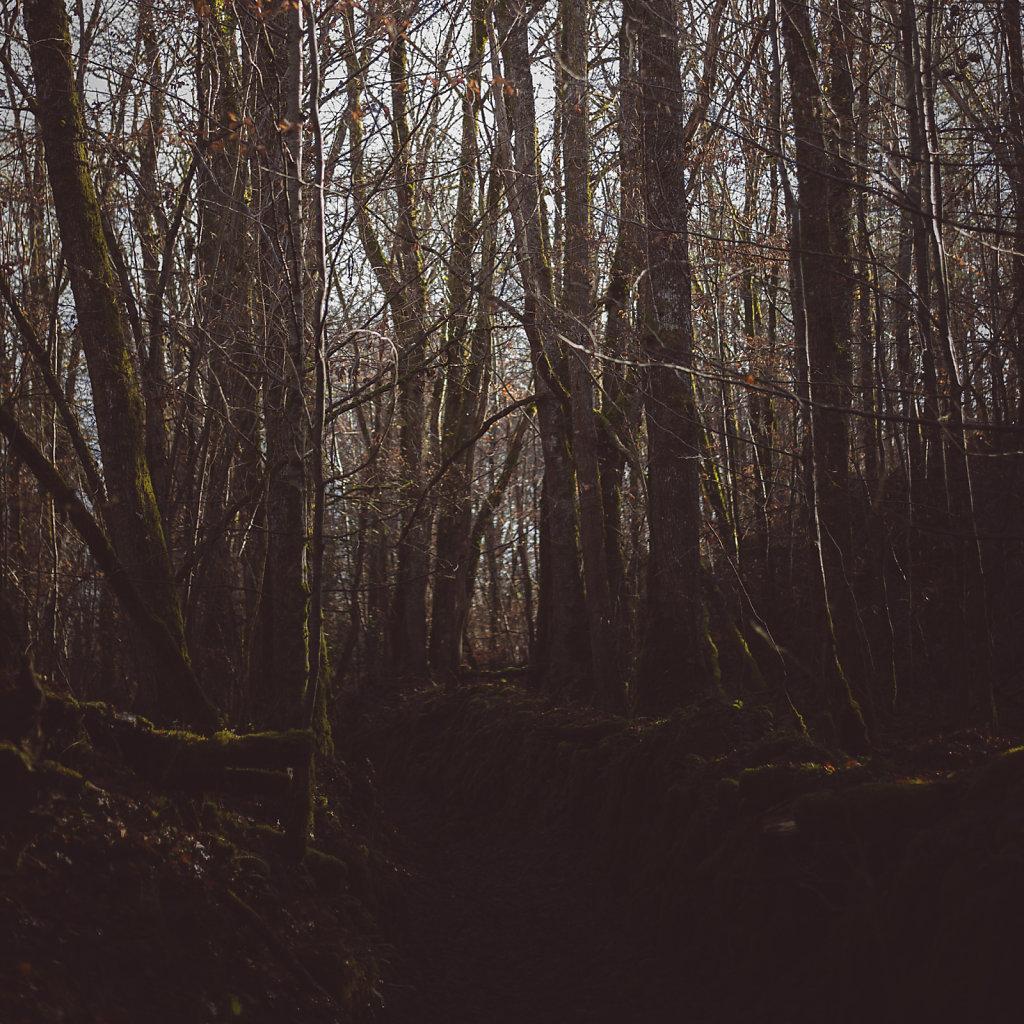 Cantal-5668.jpg