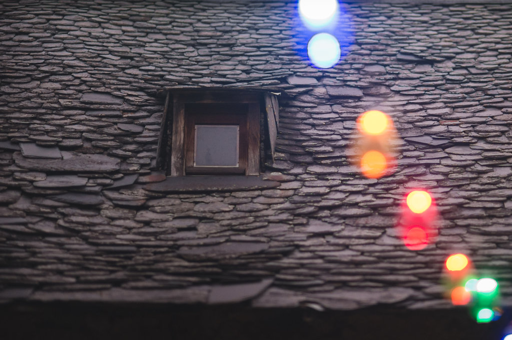 BardyLand-0892.jpg